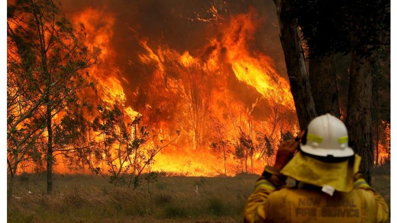 Baq.kz: Австралия табиғатты қалпына келтіру үшін 35 млн долл