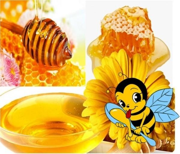 Мёд кориандр цена в Твери