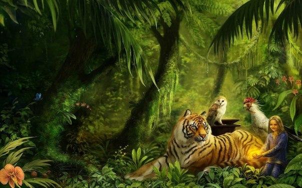 Обои На Телефон Красивые Животные