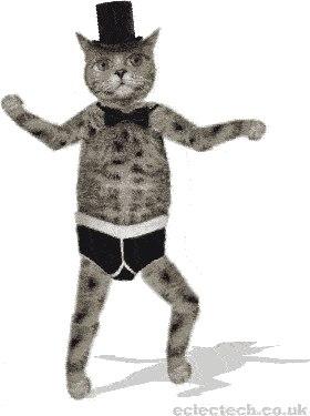 самый анимашка танцующий кот также хотел