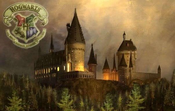Школа магии на английском гадания на картах i цыганка