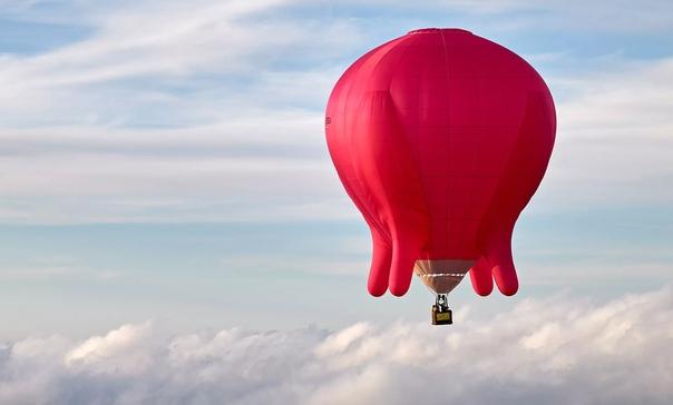 Австрийская художница Барбара Анна Хузар поднялась в небо Вены на воздушном шаре в форме вымени