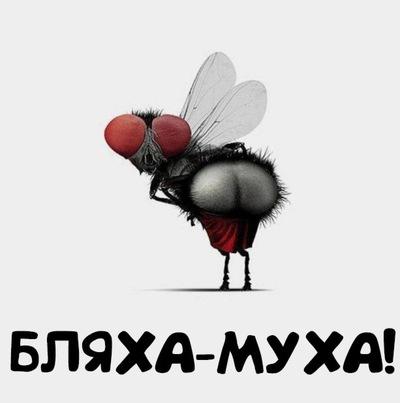 Дороге картинки, бляха- муха прикольные картинки