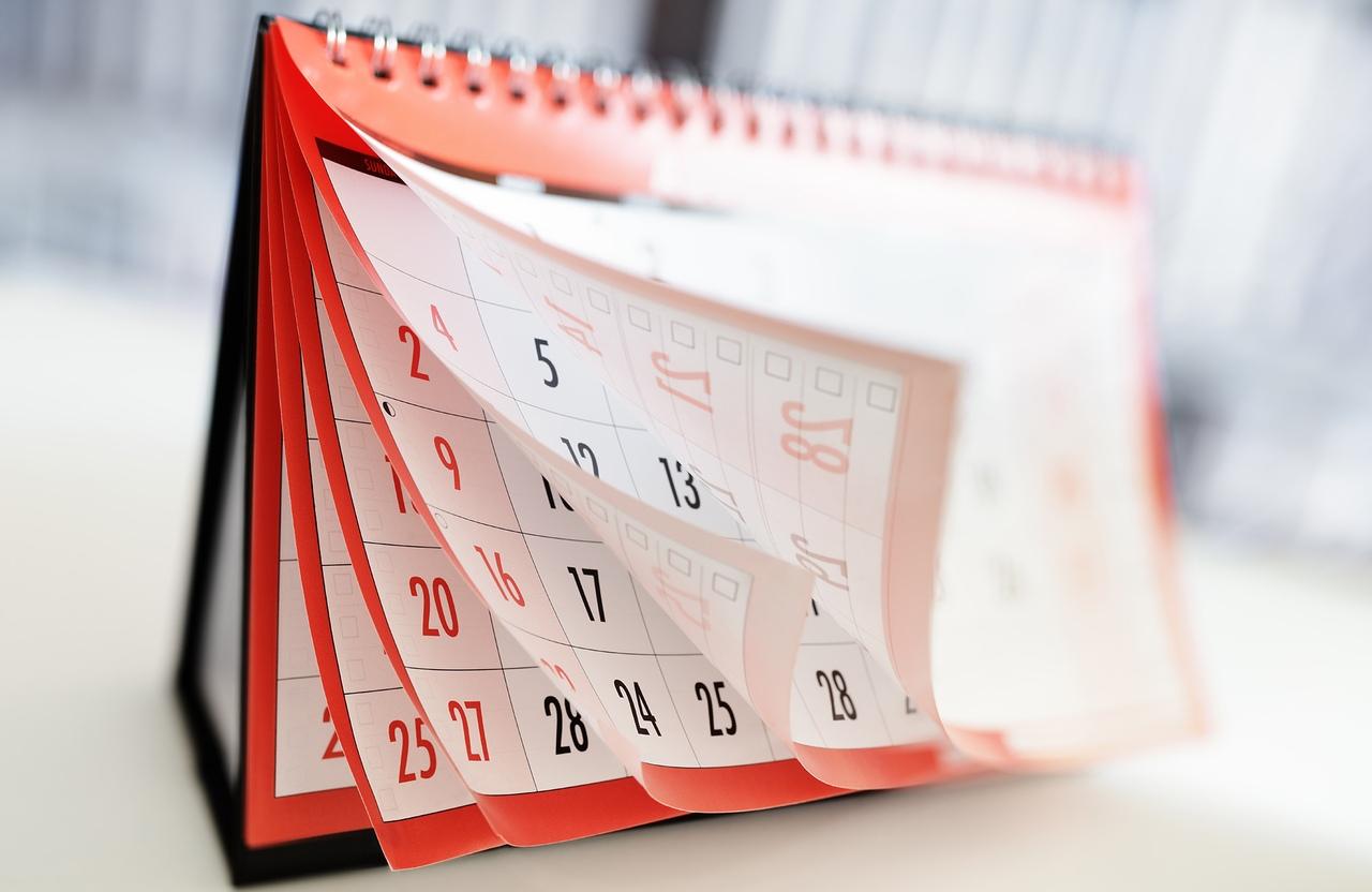 Щенята приколы, картинки календарика
