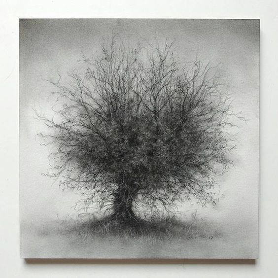 Sue Bryan. Ирландский художник.