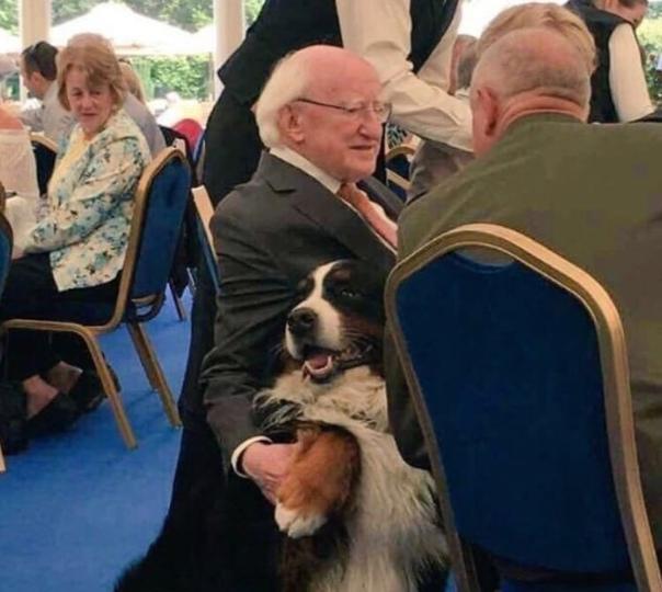 Ничего особенного, просто обычные будни 77-летнего президента Ирландии. Все свободное время мужчина посвящает тому, что просто гуляет по городу и общается с гражданами своей