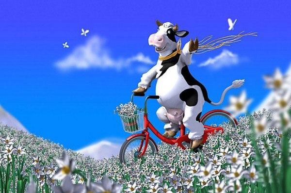 Поздравления с днем рождения корова